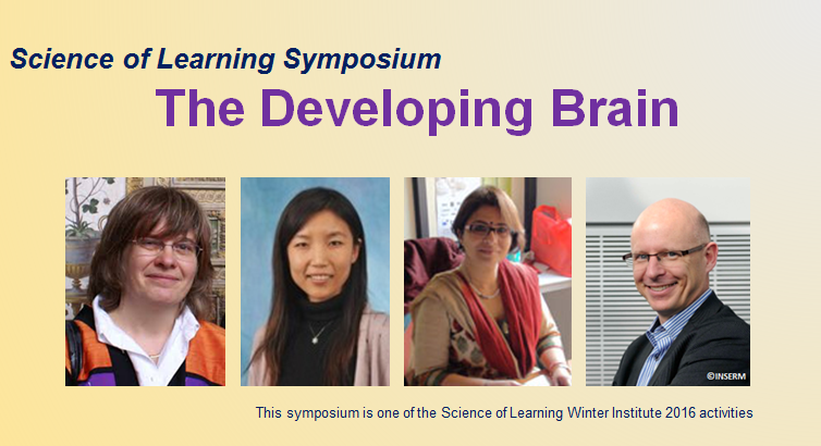 Webpage image for the developing brain symposium new new